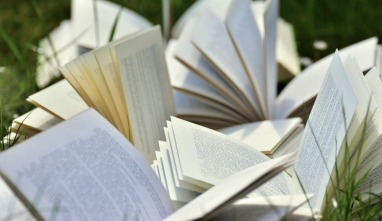 books-2241635_960_720