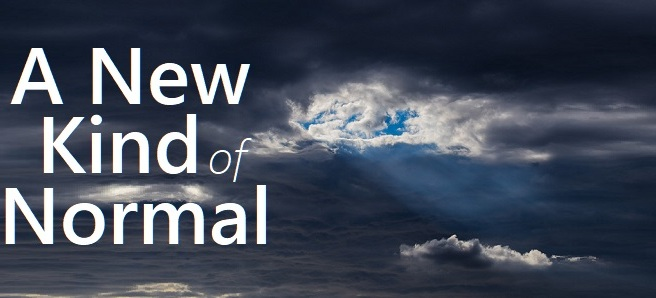 A New Kind Of Normal Verve