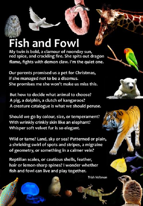 fish&fowl