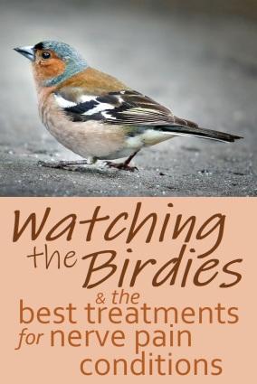 birdiespin3