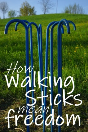 walking sticks pin